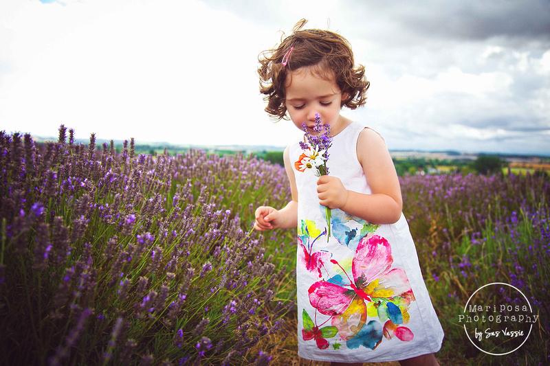 Child photography, lavender fields, Hertfordshire.