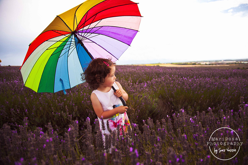 Child photography, lavender fields, Hertfordshire.